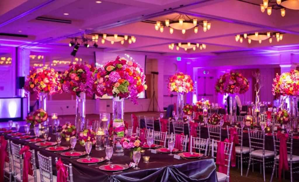 affordable event management companies in Bilaspur