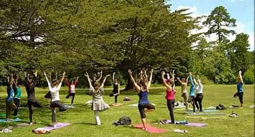 leading yoga classes in Hyderabad